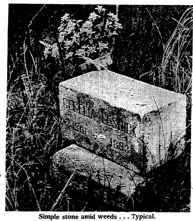 This is a 1967 pic of an 1893 gravestone for Cecilia Lesnick (1861-1893) at Potter's Field in North Omaha, Nebraska.